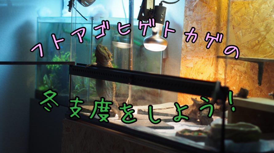トカゲの保温器具を用意しよう【早めの冬支度をしよう!】