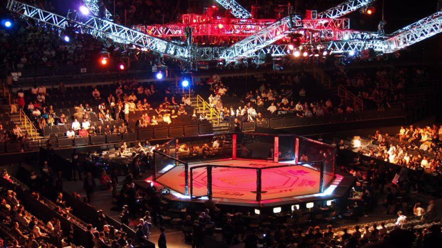 格闘技観戦のマナーについて。【UFC・RIZIN・ボクシングなどなど】
